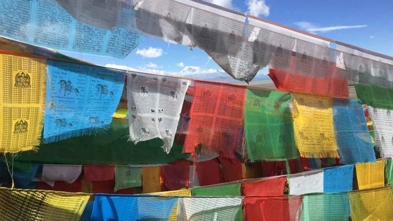Trip to Kailash: Prayer Flags in the Foothills of Mt Kailash