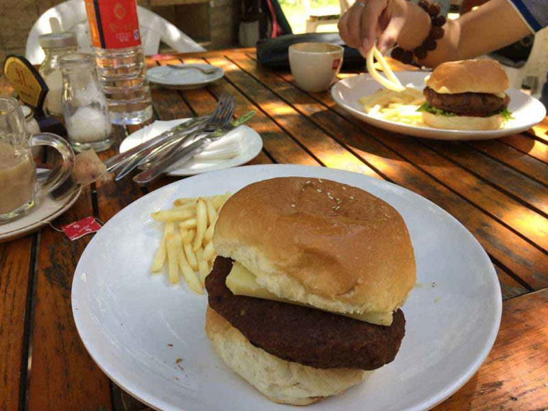 A yak burger in the garden of the Kyichu Hotel in Lhasa Tibet.