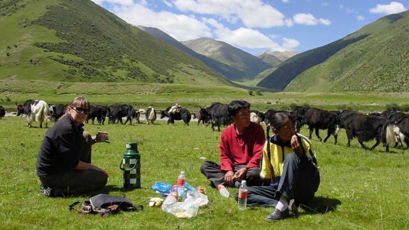 Yaks in a valley on the road to Lake Namtso