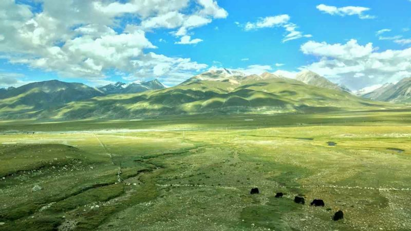 "Tibet ""sky"" train: Scenery on the way from Xining to Lhasa"